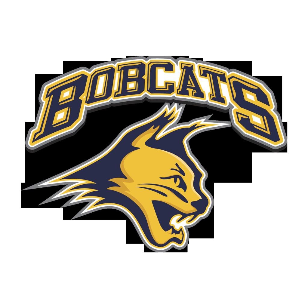 14U AZ Bobcats