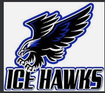 2010 Elite Ice Hawks