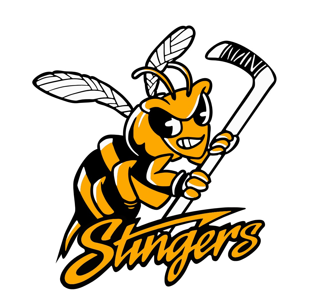 2010 Stingers